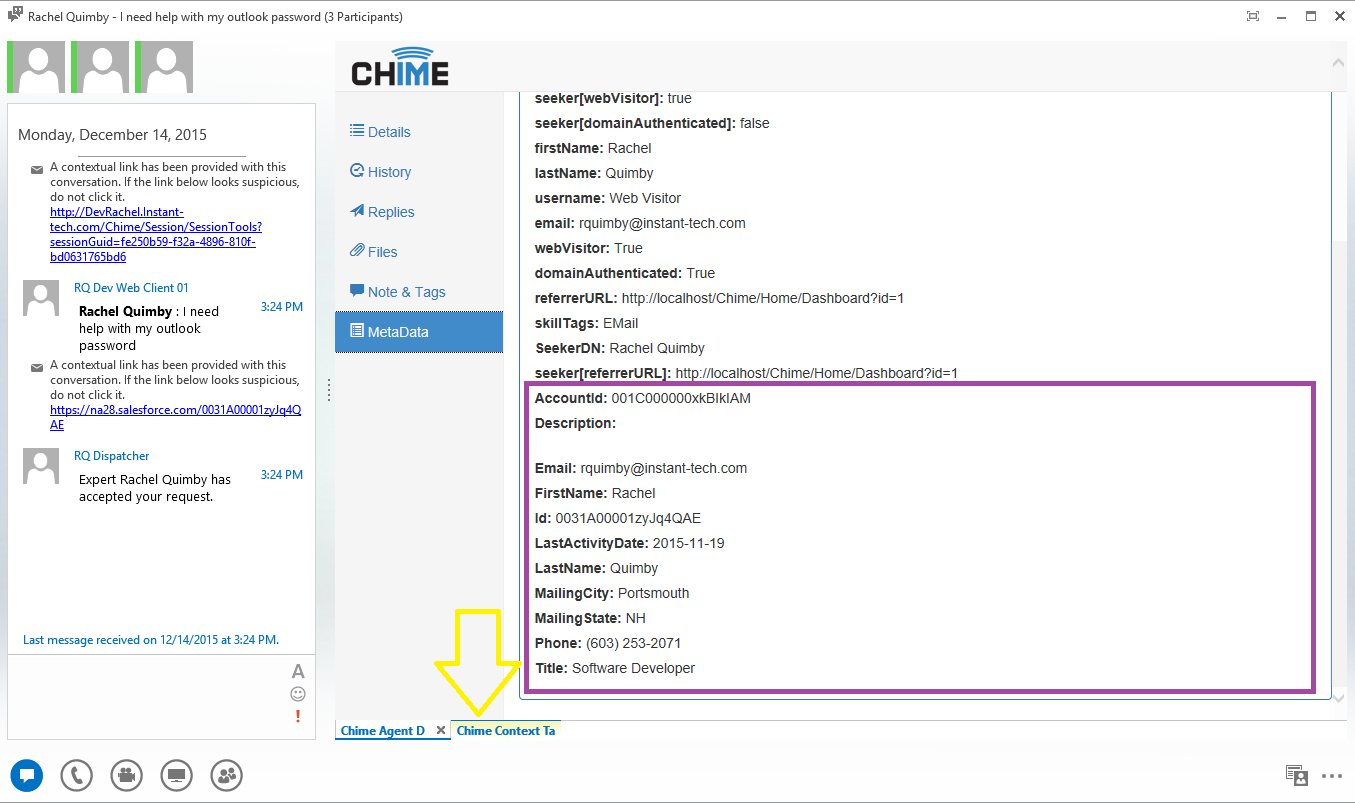 Chime will display other information grabbed by the Virtual Agent in the MetaData tab